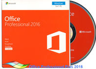 China Origineel Office 2016 Professionele FPP, Microsoft Office-Beroeps plus 2016 DVD fabriek
